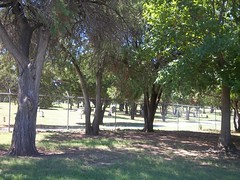 Riverside Cemetery from the falls