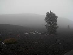 Devastation Trail, Kilauea Iki