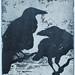 Huginn & Muninn by trini_naenae