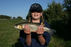 Rachel with a 3lb Chub from Moss Lake, caught on 8mm pellet using splash waggler - 23rd June 08.
