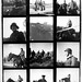 Contact sheet 11 by Caddis Fly