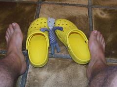 "Mis maravillosas Crocs ""amarelas"""