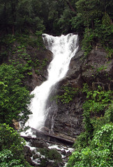 wasserfall(0.0), stream(1.0), waterfall(1.0), rainforest(1.0), water feature(1.0), body of water(1.0), watercourse(1.0), forest(1.0), ravine(1.0), state park(1.0), jungle(1.0),