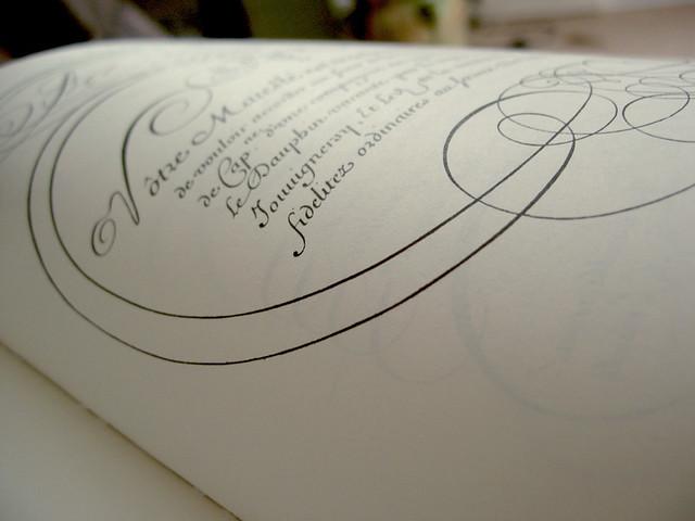 arabesque calligraphie d calligraphie mpb typographie lettre arabesque