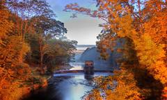 Speedwell Lake