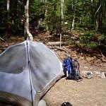 Eliza Brook Campsite Shelter