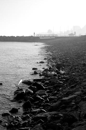 lake fog waterfront michigan petoskey