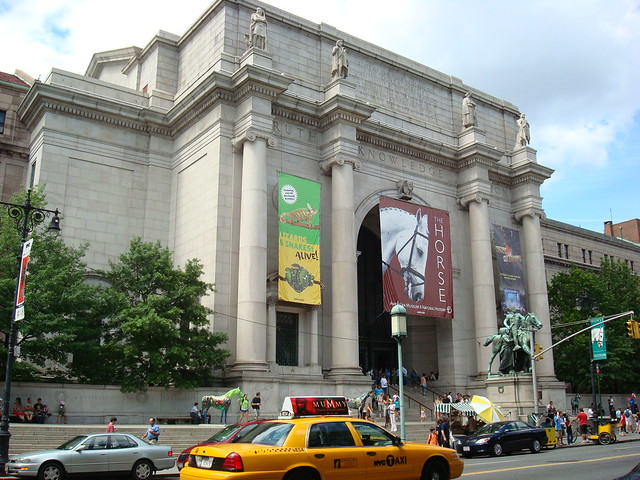 museum of natural history - 04/08