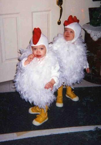 chickens 03