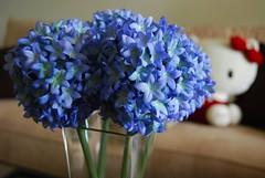 hyacinth(0.0), hydrangea(1.0), cut flowers(1.0), flower(1.0), purple(1.0), lilac(1.0), lavender(1.0), flower bouquet(1.0), blue(1.0), petal(1.0),
