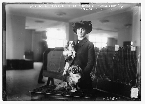 Miss M.A. Stovall with pets  (LOC)