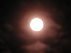 sun 011