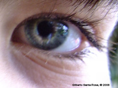 iris, eyelash, close-up, eye, organ,
