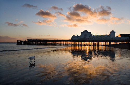 South Parade Pier - Sunset Dog