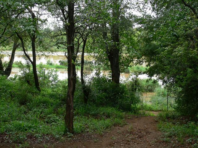 Sirheni Bush Camp