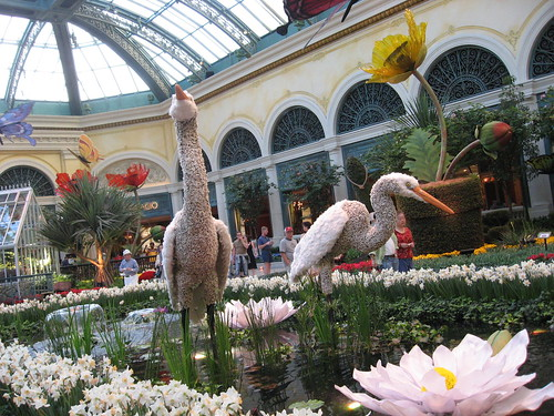 What to do in Las Vegas - Bellagio Gardens
