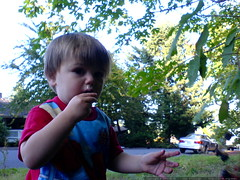 boogers and blackberries   a winning combination   D…