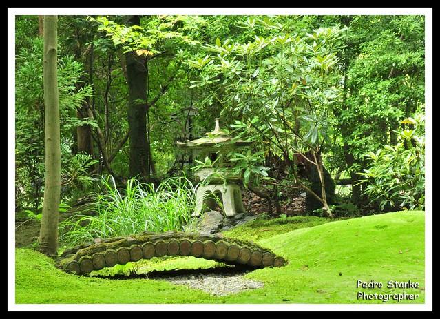 Japonese garden 1 - Arashiyama Park, Kyoto, Japan