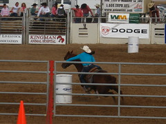 bull riding(0.0), animal sports(1.0), rodeo(1.0), western riding(1.0), event(1.0), equestrian sport(1.0), sports(1.0), barrel racing(1.0),