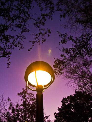 light arizona sky tree lamp sunrise purple az prescott picoftheday theworldseenfromthepowershotg9 prescottpubliclibrary