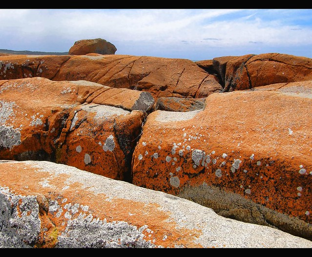 Rusty red rocks bridport tasmania today we decided for Landscaping rocks tasmania