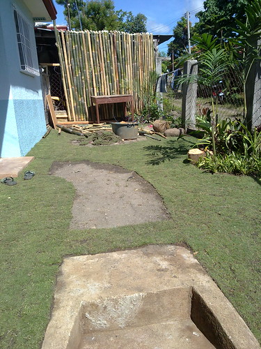 our bare walkway that needs stone bricks