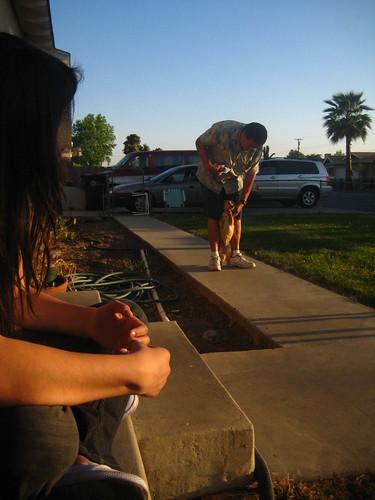 california family sunset chuck lopez porterville johnlopez chihuahuaterrier katielopez leahlopez