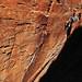 Daila Ojeda rock climbing