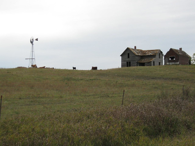 Abandoned South Dakota Farmhouse With Windmill And Cattle Flickr Photo Sharing