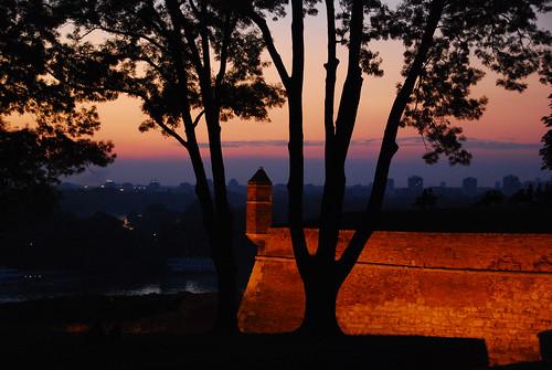 sunset tree silhouette night nikon serbia belgrade fortress beograd danube confluence sava srbija noediting usce kalemegdan dunav d80 aplusphoto