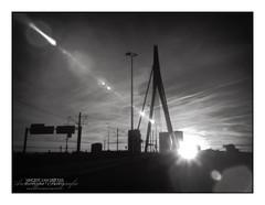 Erasmus Bridge in Flares