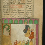 Illuminated Manuscript, Collection of poems (masnavi), A mosque scene and the question of the length of pubic hair, Walters Art Museum Ms. W.626, fol. 253b