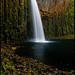 Abiqua Falls by Rosborough Photography