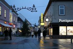 Wiener Neustadt I