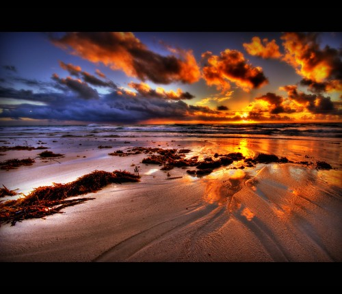 sunset red sea orange seaweed beach yellow clouds reflections fire sand waves oz flames explosion smooth blues australia perth western flipflops wa ripples dynamite explode visualart supershot flickrsbest mindari fineartphotos fireintheskies anawesomeshot colorphotoaward theunforgettablepictures wiffsmiff23 vosplusbellesphotos