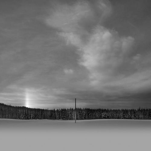 sky blackandwhite bw field clouds forest photoshop square landscape nikon scenery coverart halo 100v10f pole 2009 d300 ok6 ollik 20090101