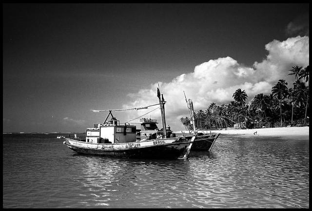 Praia de Forte Boats - Yashica T4 Zoom