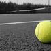 Small photo of Tennis ball
