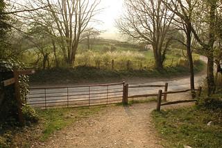 Billinghurst to Amberley