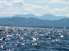 Lake Champlain with the Adirondacks
