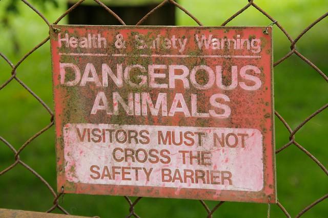 Dangerous animals sign