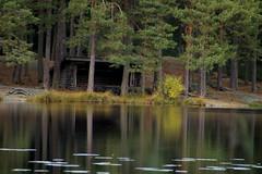 Årsjön