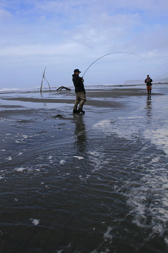 Fly fishing for salmon in the surf zone the caddis fly for Oregon coast fishing