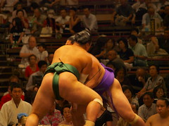freestyle wrestling(0.0), amateur wrestling(0.0), greco-roman wrestling(0.0), grappling(0.0), wrestling(0.0), collegiate wrestling(0.0), puroresu(0.0), sumo(1.0), individual sports(1.0), contact sport(1.0), sports(1.0), combat sport(1.0), wrestler(1.0),