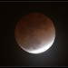 Lunar eclipse Feb. 20, 2008 by R. Borges
