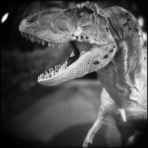 closeup holga dinosaur michigan trix annarbor exhibitmuseum nightatthemuseum a3c3nightatthemuseum