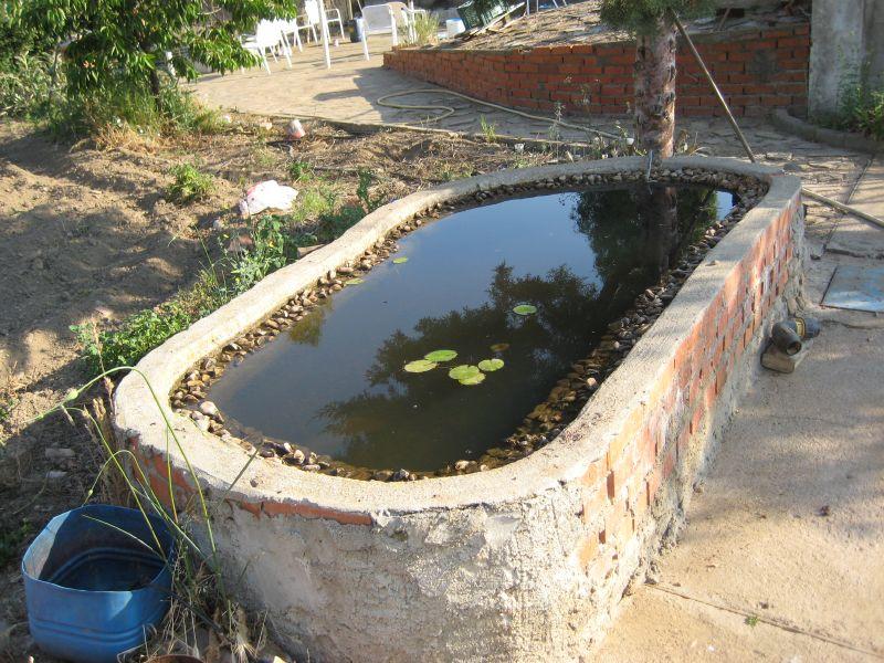 La granja online ver tema construir tortuguera for Estanque prefabricado tortugas