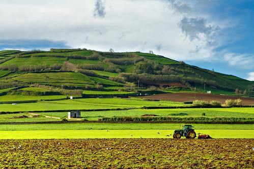 morning tractor portugal geotagged earth santana plow terra azores manhã açores sãomiguel ribeiragrande jorgecardoso lavrar ernestgaines geo:lat=3781181 geo:lon=25553674 flickr2617746383see