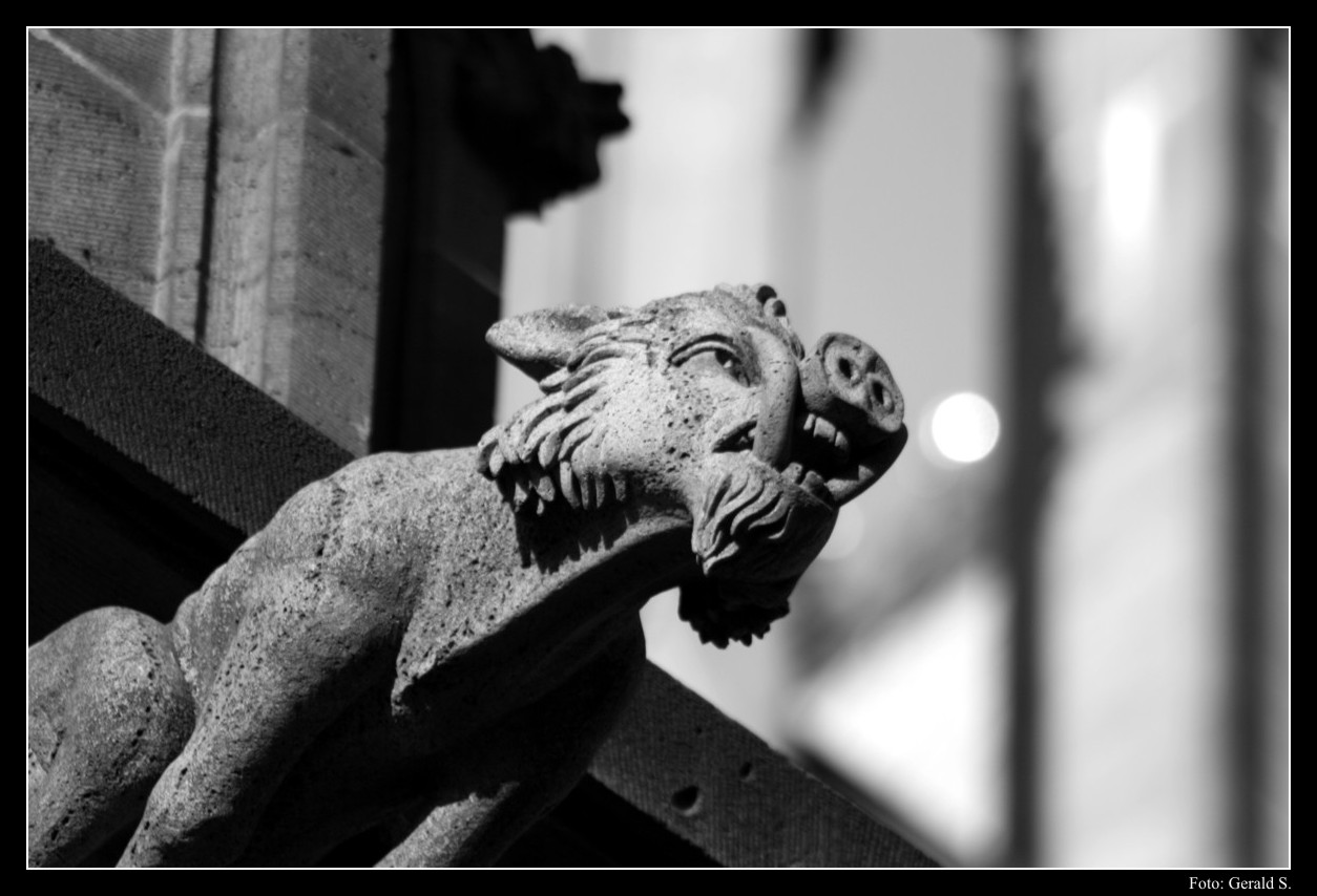 Cologne Cathedral Gargoyles Gargoyle at Cologne Cathedral