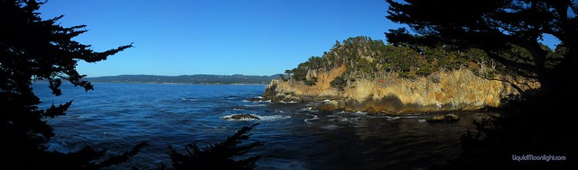 Point Lobos - Marine Wildlife Reserve - Panorama.jpg